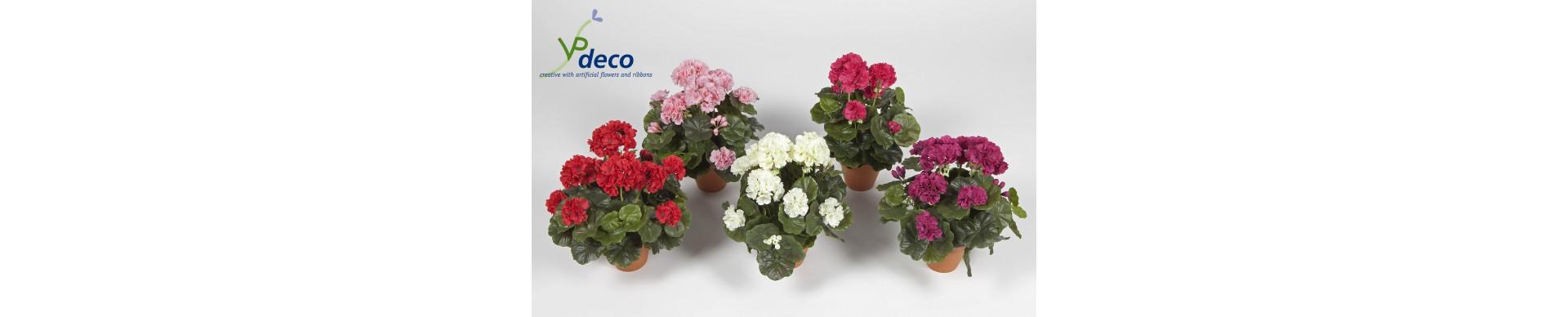 Pot planten Mini-Plants