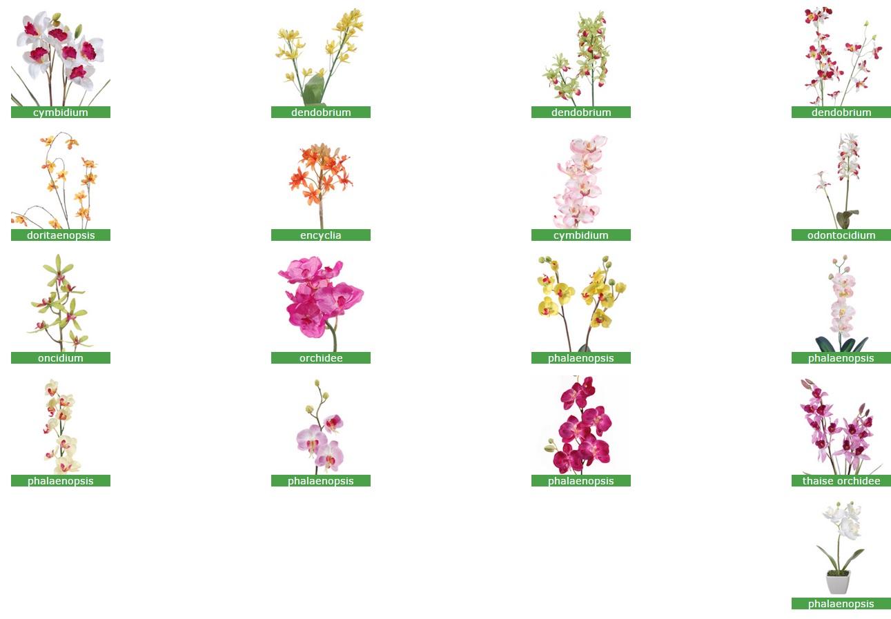 Kunst orchideeën