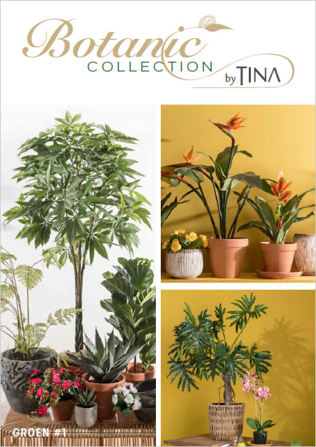 Botanic Collection by Tina Groen #1