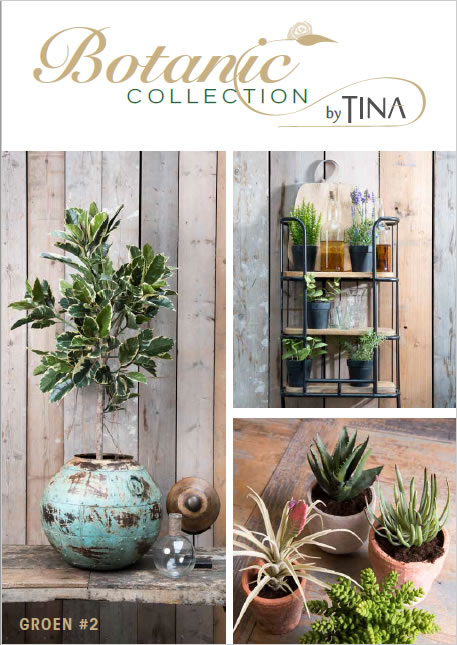 Botanic Collection by Tina Groen #2